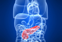 Tudo sobre Câncer de Pâncreas