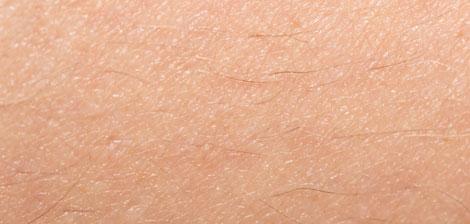 Conheça a sua pele